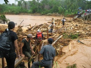Floods are a consequence of a broken water cycle due to deforestation.