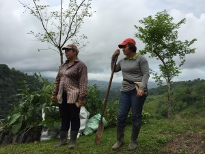GEILYN AND DELANA HELPED TO PLANT THESE THOUSANDS OF TREES!