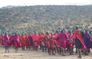 Executive Director of Maasai Center for Regenerative Pastoralism